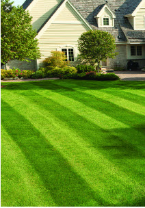 Somerset County lawn services - Lawn care landscaping services in Somerset County, NJ