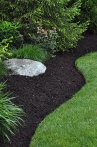 Fall clean-up landscaping services in Bridgewater, NJ 08807